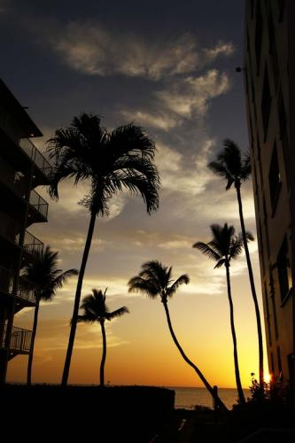 This is the sunset from the walkway right outside our Lanai. Always spectacular!